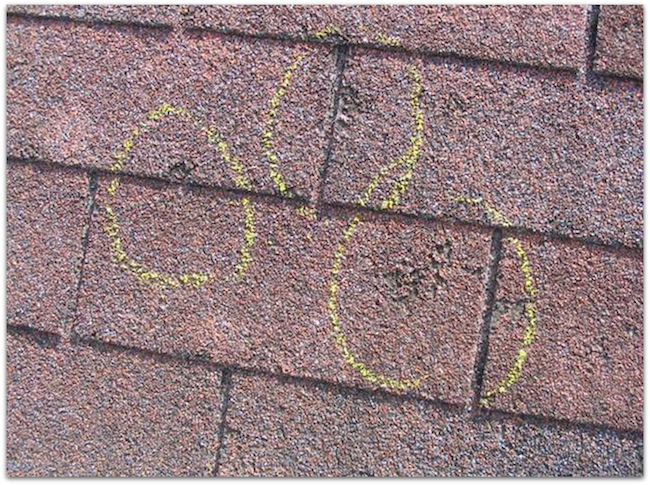 hail damaged shingle
